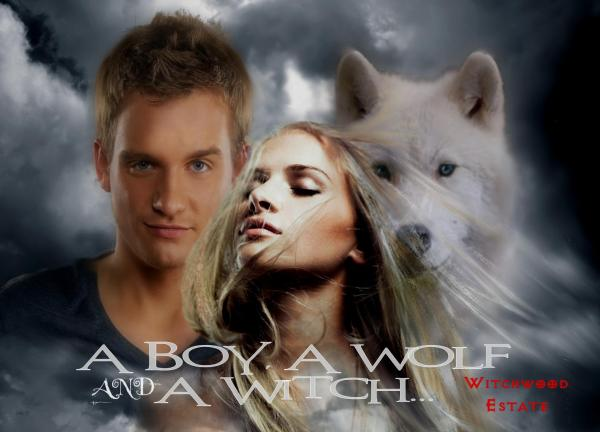 the boy the wolf & the girl